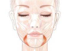 За опущенные уголки губ, которые придают лицу унылое выражение, отвечает мышца, опускающая угол рта. Иначе еще её называют «мышца презрения». Эта треугольная по форме мышца, начинаясь от боковой поверхности нижней челюсти, вплетается в круговую мышцу рта и при напряжении оттягивает уголок рта книзу. Увы, если у вас опустились уголки рта, придется признать, что вы, скорее всего, тщательно скрываете общее недовольство …