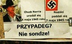 Wtf Funny, Hilarious, Polish Memes, Funny Mems, Chuck Norris, Meme Lord, Say More, I Cant Even, Mood Pics