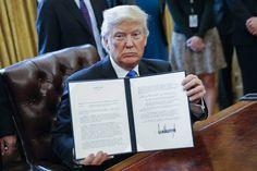 Trump prepara el decreto para empezar a construir el muro con México    El presidente firmará este miércoles órdenes que vetan temporalmen...