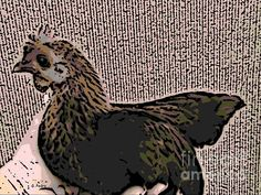 Brown Red Old English Game Bantam