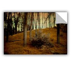 ArtWall Meander 4 Removable Wall Mural Size: