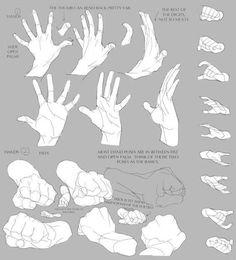 Референсы, уроки и анатомия художников (РУАХ)