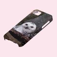Cute Owls iPhone 5 Case
