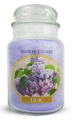 Yankee Candle Large Jar housewarmer 623 G Bougie Parfumée Lovely Kiku