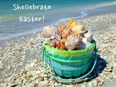 Shellebrate Easter Facebook: Anna Maria Island Beach Life www.annamariaislandhomerental.com #annamariaisland #beachbirthdays