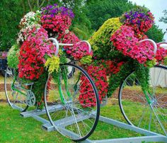 Annuals planted to look like bike riders - garden art