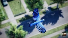 #bluebird #nature #animal #animation #gamedev #gameart #UE4 #unrealengine #unity Unreal Engine, Blue Bird, Unity, This Is Us, Animation, Asset Store, Fantasy, Characters, Animals