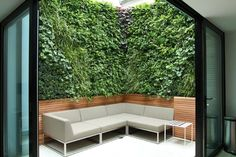 Private Courtyard, London, Living Wall (From Biotecture)