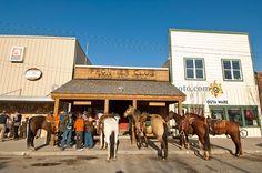 Montana Horse Bar