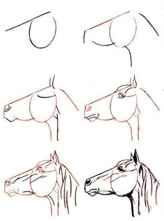 comment dessiner un cheval facile Plus Plus