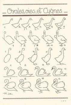 How to draw ducks