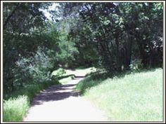 Shiloh Ridge Windsor CA
