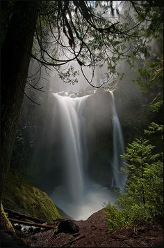 Falls Creek Falls • Light and Magic by victorvonsalza, via Flickr
