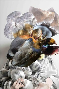 Amazed by this Feather Head, 2012 by Helle!
