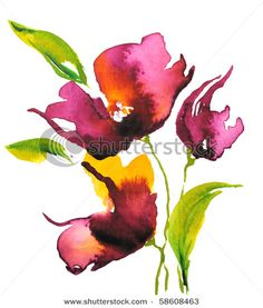 water colour floral