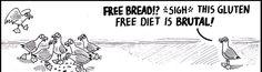 New Dairy Intolerance Meme Ideas Trader Joes Vegan, What Is Great, Lunch Wraps, Dairy Free Ice Cream, Gluten Intolerance, Free Comics, No Dairy Recipes, Celiac Disease, Gluten Free Diet