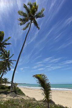 Praia da Sereia - Maceió, Alagoas by Francisco Aragão on Flickr.