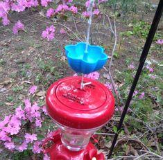 Hummingbird+Ant+Moat+by+corkymork.
