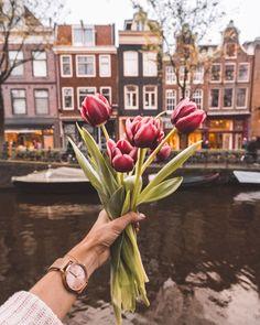 @finduslost in Amsterdam
