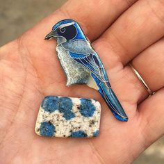 Do you like blue? I do, too! Western scrub jay will be paired with K2 #westernscrubjay #scrubjay #bluejay #k2 #k2stone #cloisonne #enameling #handmade #blue