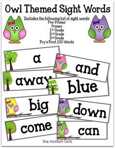 Owl Themed Classroom Decor!  Edit your own sight word cards!