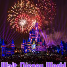 Tips & tricks for Disney World, Disneyland, and more. Disney vacation planning guide with money saving tips for travel, with restaurant & hotel reviews, top 10 lists, plus other ideas!