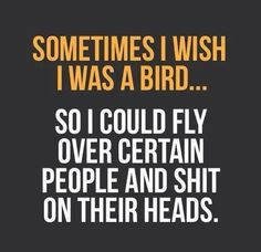 Sometimes I wish I was a bird....