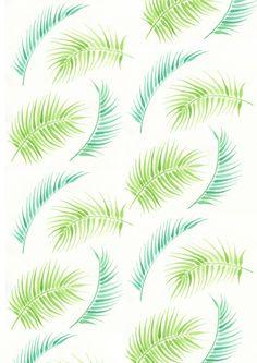 Summery Ferns