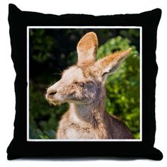 Allie catching some sun rays Throw Pillow by Terrella