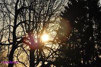 Aufgehende Sonne!