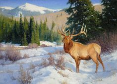 Elk painting by Ralph Oberg