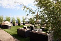 Transforming a car park in to a wedding oasis with artificial turf and large bamboos