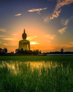 Outra perspectiva sobre o Wat Muang o grande Buda da Tailândia. #calçathai #culturatailandesa #tailândia #buda #watmuang #templo #budismo #fotografia