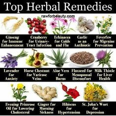 #Herbalremedies #naturalhealing #herbs