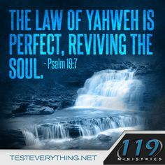 The Law of yahweh is perfect, reviving the soul Psalm 19:7