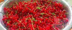 Recept Domácí rybízová marmeláda