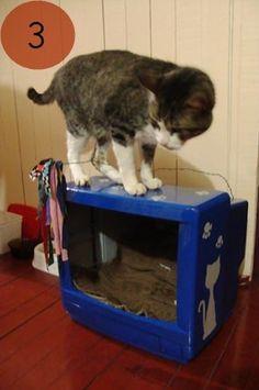 Ou casinha para o gato. http://www.minhacasaminhacara.com.br/top-5-da-semana-11/
