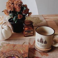 coffee   hot chocolate   autumn   fall   cold season
