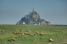 Le Mont St Michel Normandie France.  Stoppeinhereon Monday and took picture.