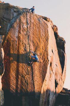 Climb things.