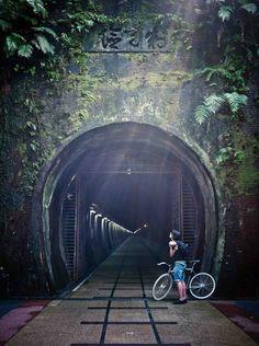 苔むしたトンネル、廃線跡?