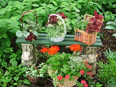 Stunning Low-Budget Container Gardens   Landscaping Ideas and Hardscape Design   HGTV   Baskets, of which I have many.
