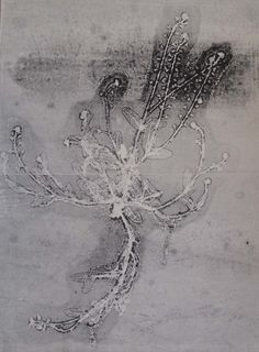 stef mitchell - botanical monoprint - forget me not