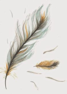 Items similar to Original Drawing/Illustration - Blue and Brown Feather on Etsy - Love this in one dark colour just the one on the left - Feather Drawing, Watercolor Feather, Feather Painting, Feather Art, Small Feather Tattoos, Pheonix Feather, Tattoo Feather, Tattoo Drawings, Art Drawings