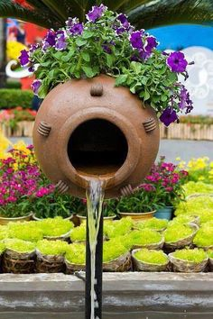 Cool Garden Photos For A Cool Spring Inspiration - World inside pictures Indoor Vegetable Gardening, Organic Gardening, Gardening Tips, Gardening Vegetables, Beautiful Gif, Beautiful Roses, Beautiful Gardens, Beautiful Monday, Pretty Flowers