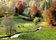 France : Le plateau de Millevaches, Corrèze, Creuse, Haute-Vienne