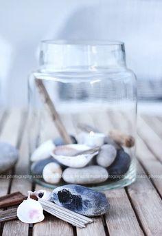 Ocean Sea:  Seashells and sea stones.