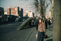 Taking bamboo to factory Seoul 1966 | by kathrynrmcneil