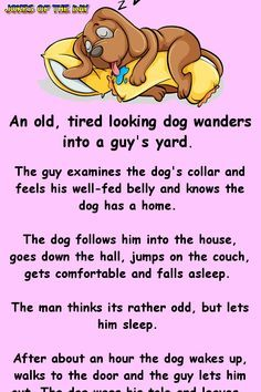 An old, tired looking dog wanders into a guy's yard