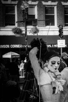 harvard square marionette: cambridge